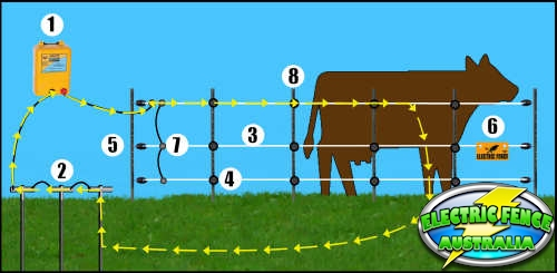 how_to_electric_fence_for